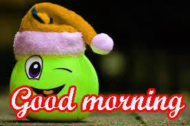funny sunday good morning images photo hd