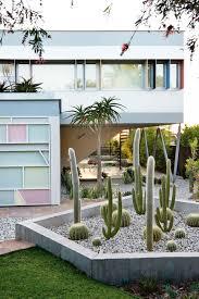 Palm Springs Garden Design Pin By Claudia Zhao On Palm Springs Garden Inspo Palm