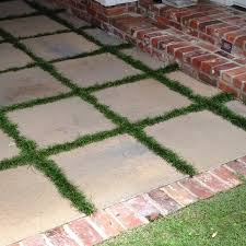 patio pavers with grass in between. Unique With Patio Area With Monkey Grass Between Pavers Intended Pavers With Grass In Between G