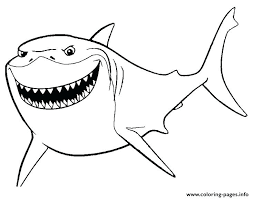 Finding Nemo Coloring Pages Crush Squirt Coloring Page For Finding