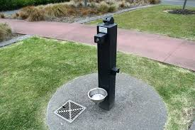 outdoor dog water fountain ideas activated