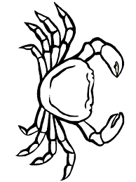 Small Picture crab coloring pages to print out coloring Pages Pinterest