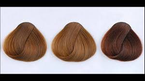 What Are Different Shades Of Mocha Hair Color Youtube