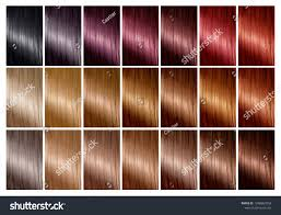 Sample Hair Color Chart Color Chart Hair Dye Hair Color Stock Photo Royalty Free 1