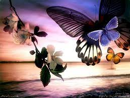 Butterfly Wallpaper Moving