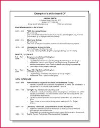 Example Of Skills Based Resume Skills Based Resume Templates Skills Based Resume Templates Skill 7