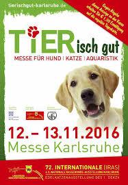 Treffpunkt Karlsruhe Ausgabe November 2016