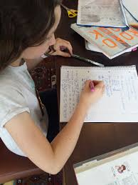 essay writing hire spanish