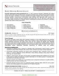 Resume Points Top Project Management Bullet Points Chic Manager Resume Bullet 24
