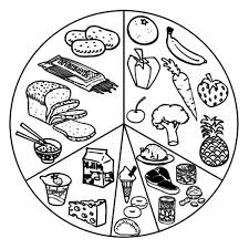 Small Picture Food Pyramid Coloring Pages Surfnetkids food pyramid