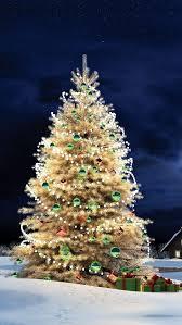 christmas tree background iphone 6. Fine Christmas Frosted Christmas Tree Wallpaper And Background Iphone 6 P