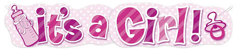 Unique Party 90508 Its A Girl Baby Shower Jointed Banner