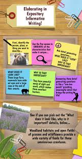 elaborating in expository informative writing infographic  informative explanatory essay guide explanatory or expository essay writing an explanatory essay also called an expository essay presents other people s