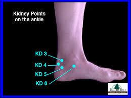 Kidney Acupressure Points On The Ankle Big Tree School Of