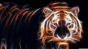 3d Tiger Live Wallpaper - 3d Wallpaper ...