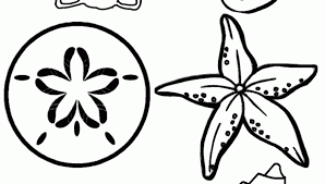 Small Picture Sea Shells Coloring Pages Advanced Coloring Pages Difficult 13790