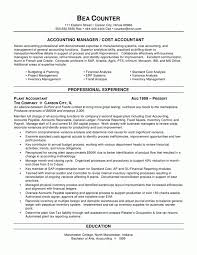 Accounting Resume Summary Finance Resume Example Emphasis Accounting ...