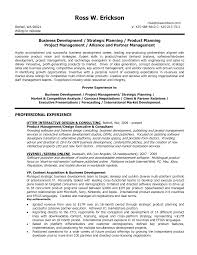 Resume Of Business Development Executive Assistant Account