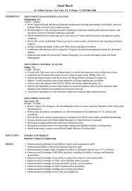 Document Analyst Resume Samples Velvet Jobs