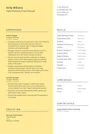 Targeted Digital Marketing Project Manager Cover Letter Example