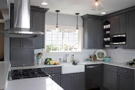 Dark Gray Cabinets Kitchen Traditional Dark Brown Cabinet Light Gray Kitchen Cabinets Grey