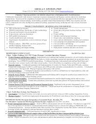 Business Analyst Project Manager Resume Sample Business Analyst Project Manager Resume Sample Enderrealtyparkco 3