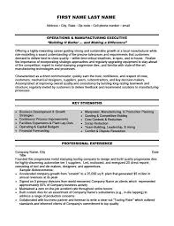 Executive Resumes Templates Beauteous Operations And Management Executive Resume Template Premium Resume