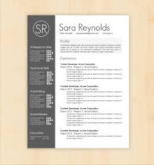 Chic Resume Word Format Free Download For Professional Cv Template