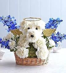 dog bereavement gifts every goes to heaven bouquet a lovely sympathy gift