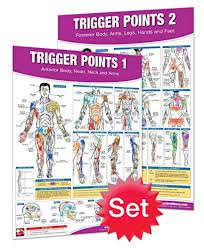 Trigger Point Therapy Chart Poster Set Acupressure Charts Myofascial Trigger Points Massage Therapy Charts Muscle Pain Relief Posters