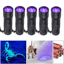 Can You See Bed Bugs With A Black Light Beinhome 5 Pack Uv Flashlight Black Light 12 Led Ultra Violet Blacklight Detector For Dog Urine Pet Stains And Bed Bug Batteries Included