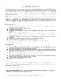 Auditor Resume Therpgmovie