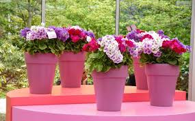 Pink Flower Pots For Romantic Garden Idea Getting A Beautiful. Flower  Garden Romantic.