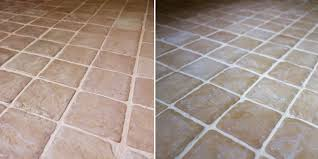 Nepinetwork Dining Room Best Cleaner For Pink Mold On Bathroom Grout Curious Nut