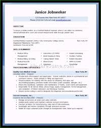How Should A Resume Look Like Marvelous What Does A Job Resume Look Like For Your