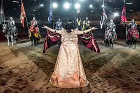 Image result for medieval times