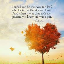 Fall Quotes Custom 48 Autumn Quotes QuotePrism