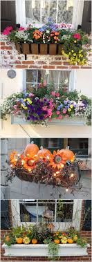 Outside Window Decorations Best 25 Fall Window Boxes Ideas On Pinterest Fall Flower Boxes
