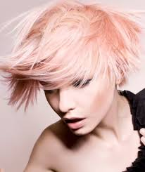 Hairstyle Color Gallery hair color gallery for 2014 2017 haircuts hairstyles and hair 2429 by stevesalt.us