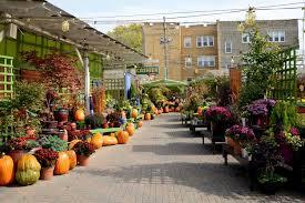 15 best chicago garden and nursery s expertise