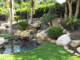 koi ponds pictures | Garcia Rock And Water Design Blog | koi pond design  and construction