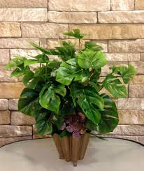 perfect office plants. full image for beautiful office plants fluorescent light 115 philodendron is also perfect .