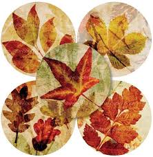 Autumn Leaf Collages