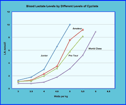 Lactate And Cycling