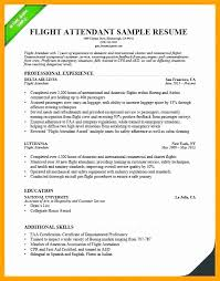 Bilingual Flight Attendant Sample Resume Stunning Flight Attendant Resume No Experience Astonishing Entry Level Flight