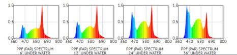 Choosing The Best Light Spectrum For Planted Tank The 2hr