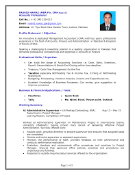 Resume Suggestion Dubai Resume Template