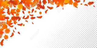 Fall Leaf Pattern Custom Autumn Leaf Fall Or Autumnal Falling Leaves Pattern On Transparent