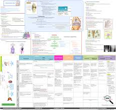 osteoarthritis (oa) concept map zoom out pharmacotherapy blog Uti Concept Map osteoarthritis concept map uti nursing concept map