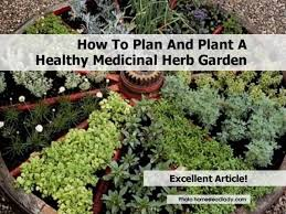Small Picture Top 20 Medicinal Herb Garden Design A medicinal herb garden